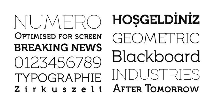 Full Neue Font Family