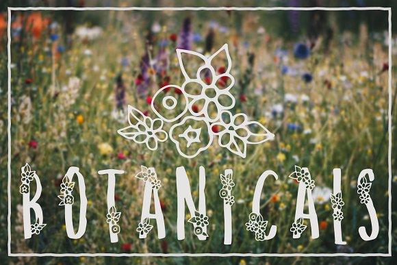 Melange A Flower Font for Spring