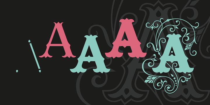 Ana Font Family