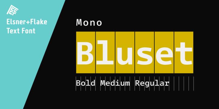 Bluset Now Mono Family