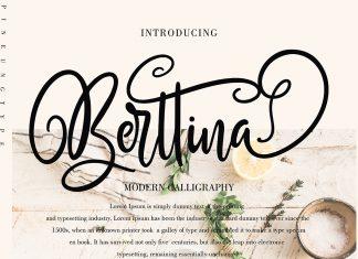FontBundles - Berttina