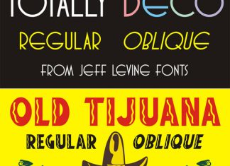 Jeff Levine Vintage Font Bundle - 93 Font Family