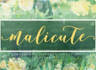 Malicute script Font