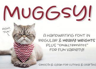 Muggsy - a short and stout fun font