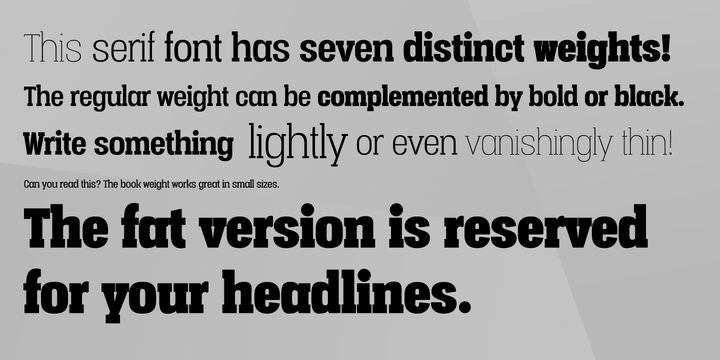 Vacer Serif Font Family