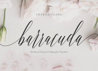 Barracuda Script Font