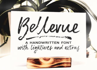 Bellevue | a brush font Script