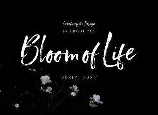 Bloom of Life Script font