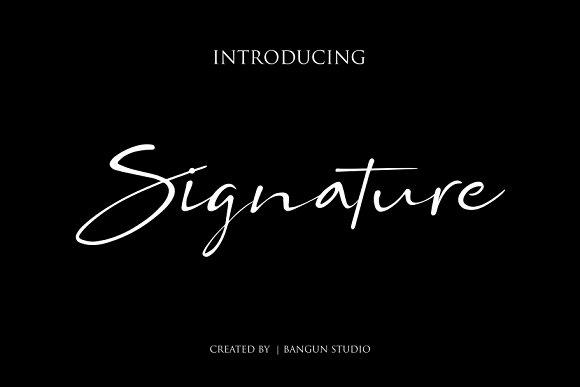 BS SIGNATURE Font