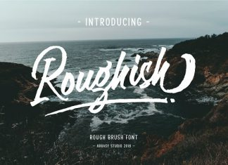 Roughish Brush Script Font