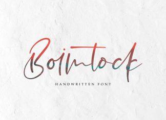 Boimtock  Script Font