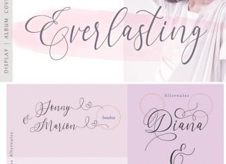Dialova - Beautiful Calligraphy Font