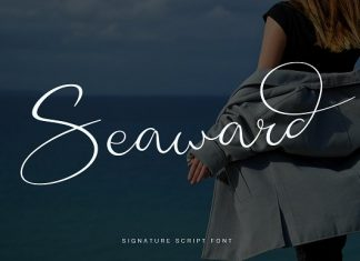 Seaward Font