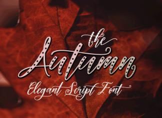 Autumn Elegant Script Font