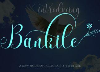 Bankile Script Font