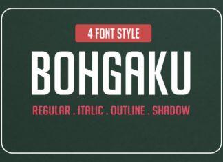 Bohgaku Family Font