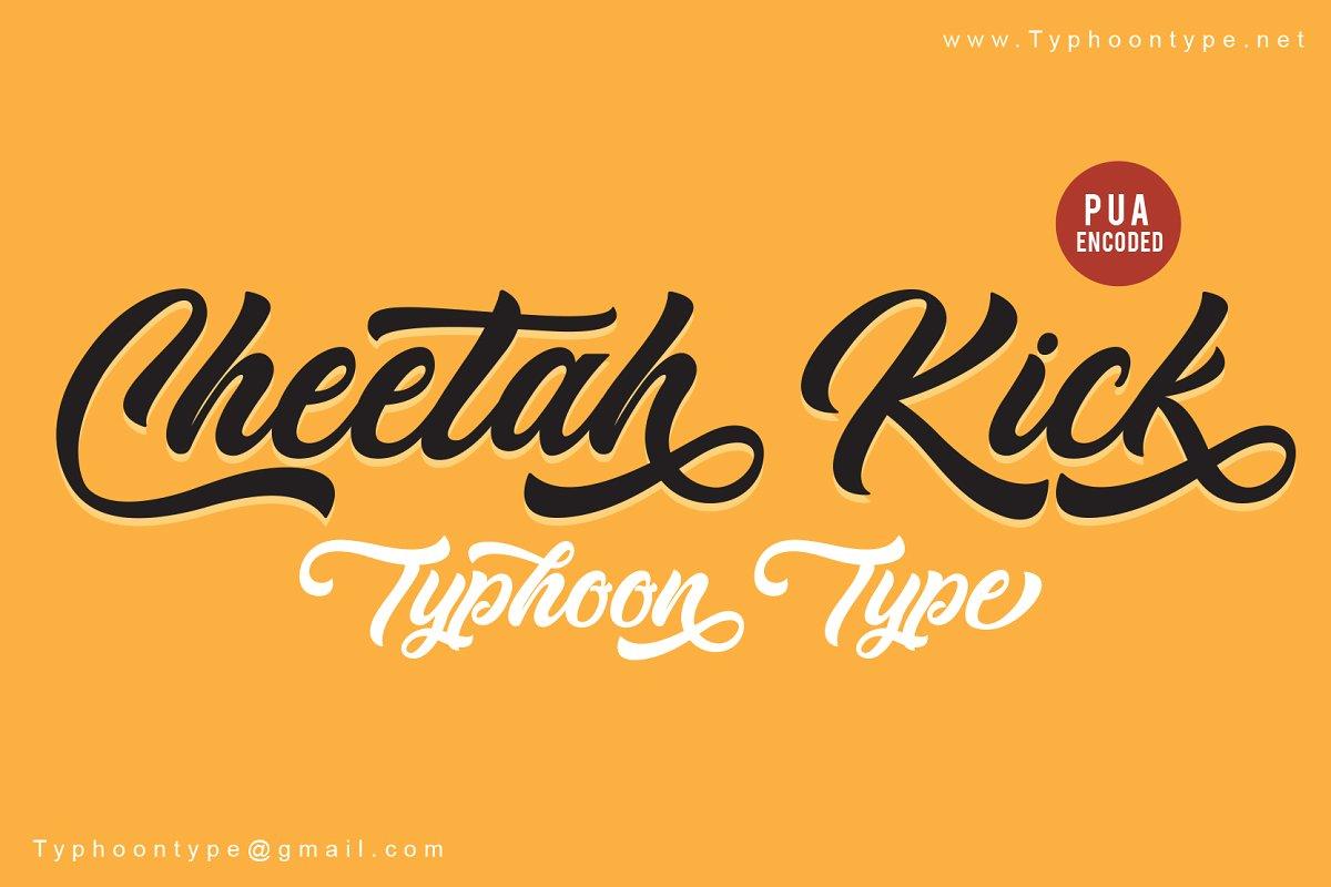 Cheetah Kick font