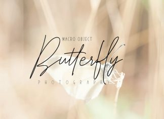 Elegantly & Modest Duo Font Family