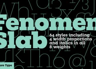 Fenomen Slab Font Family