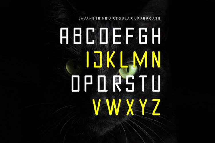 JAVANESE NEURegular Font