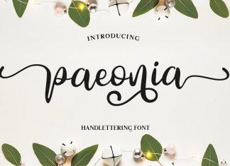 Paeonia Font