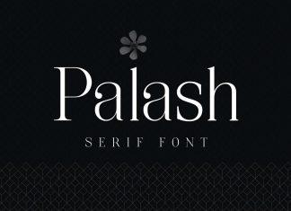 Palash - Serif Font