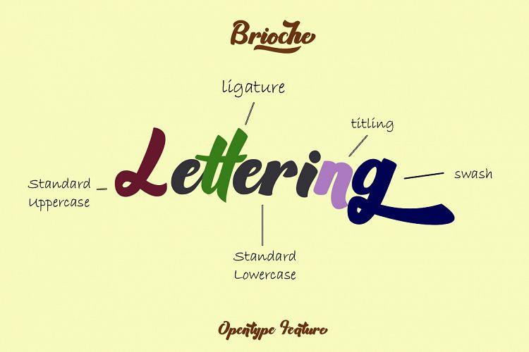 Brioche - Bold Script TypefaceScript Font