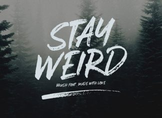 Stay Weird - Brush Font + Swashes