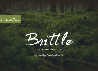 Brittle - a handwritten script font