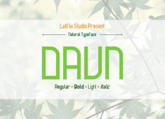 Daun Family Font