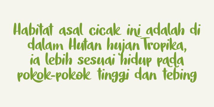 Tokeh Font Family