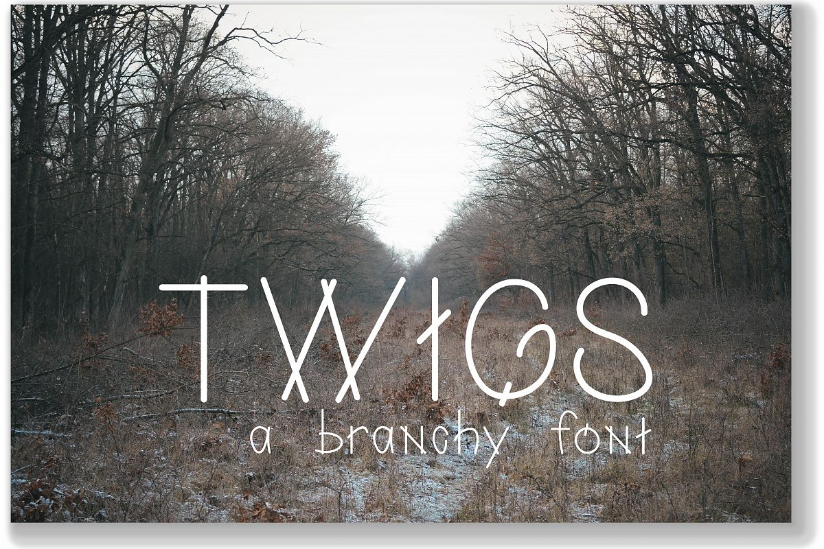 Twigs A Branchy Font Regular