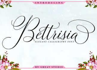 Bettrisia Script - SALE!