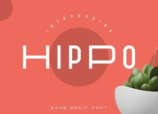 Hippo Sans Serif | 3 styles