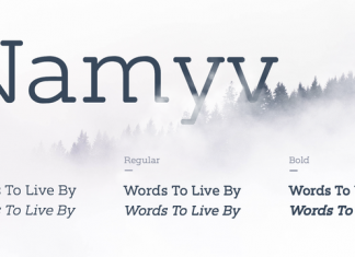 Namyv Font Family