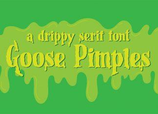 PN Goose Pimples Other Font