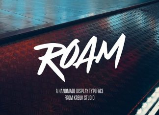 Roam Display Font 50% OFF