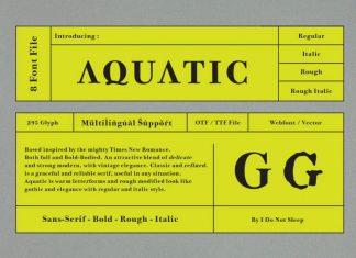 Aquatic Regular Font