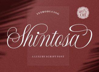 Shintosa Font