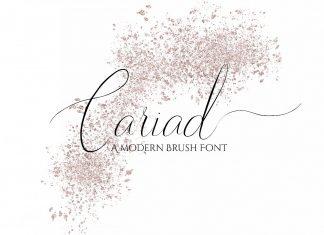 Cariad - A modern Script Font