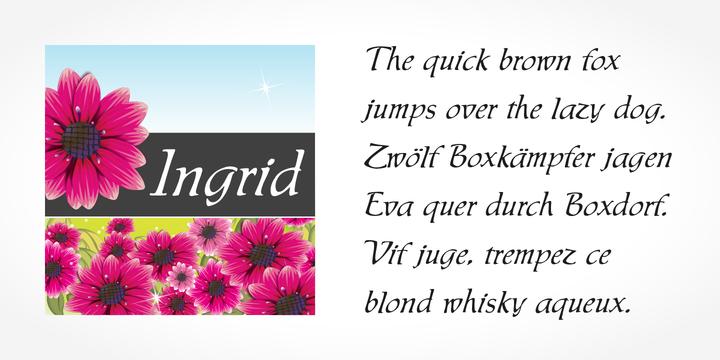 Ingrid Font