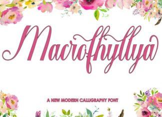 Macrofhyllya Script