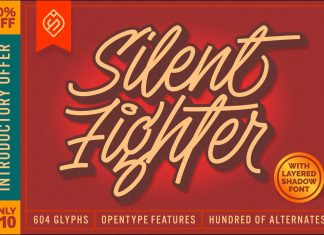 Silent Fighter - 3D Layered Font