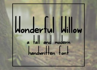 Wonderful Willow
