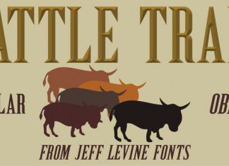 Cattle Trail JNL Font