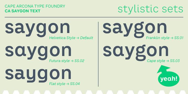 CA SaygonText Font Family - 14 Fonts