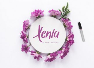 Xenia Family Typeface Script Font