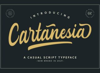 Cartanesia Font