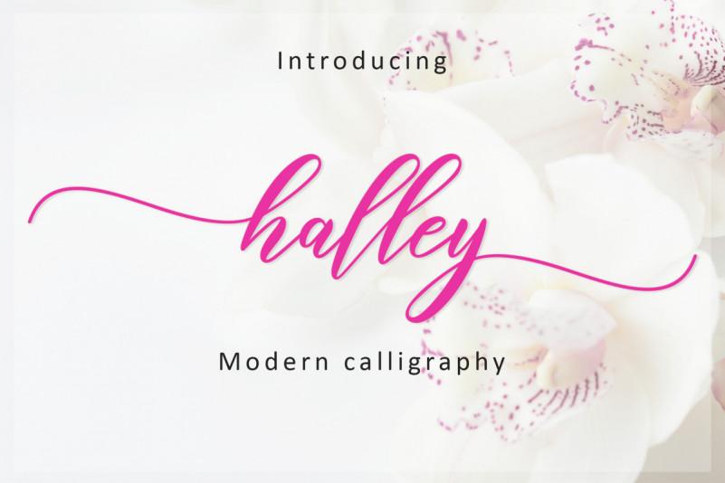 Halley Script Font