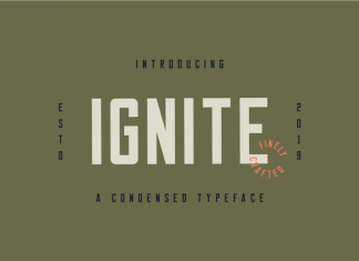 Ignite - Commercial License